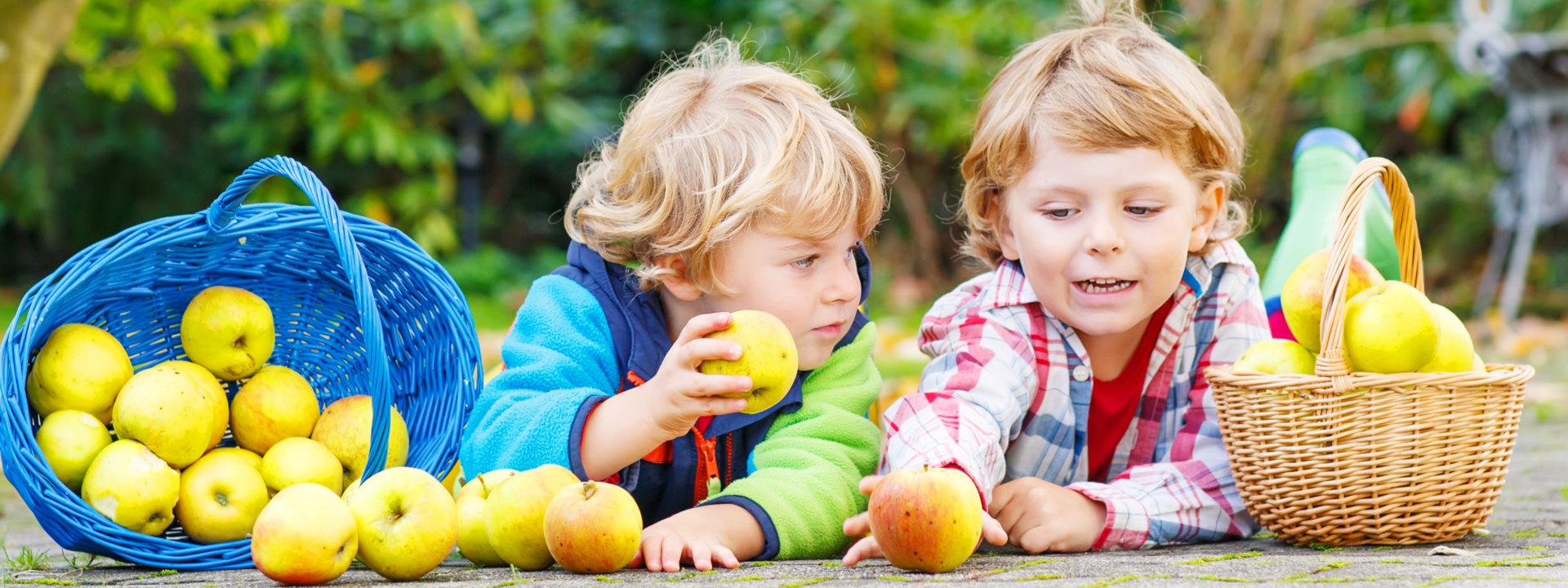 Студия раннего развития <br>(для детей от 1 до 4 лет)